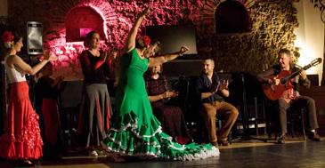 flamenco_verein_2