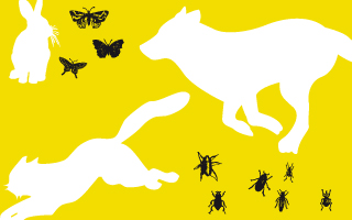 <span style='color:grey;font-size:13px;'>12.05. | 8 Jahre CAPITOL&PALATIN</span><br/> Zwei Filme mit Tieren